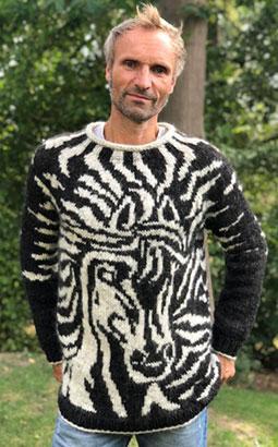 Pullover Örn